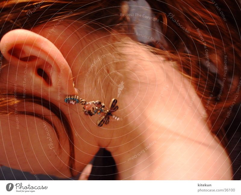 There's a dragonfly on your ear, darling! Dragonfly Girl Woman Style Nape Hair and hairstyles Shoulder Ear Earring Neck Chestnut tree