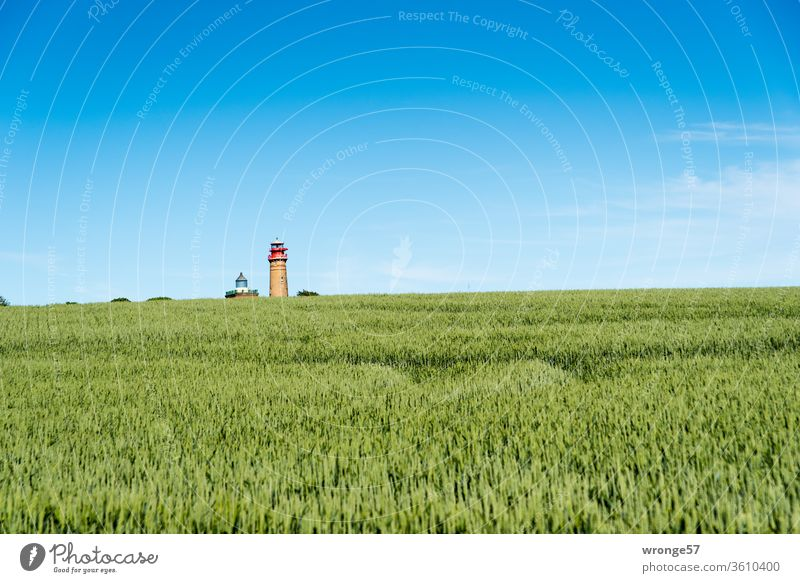The two lighthouses at Cape Arkona tiny little behind a green cornfield on the horizon Lighthouse Schinkel lighthouse new lighthouse Navigation mark Cap Arcona
