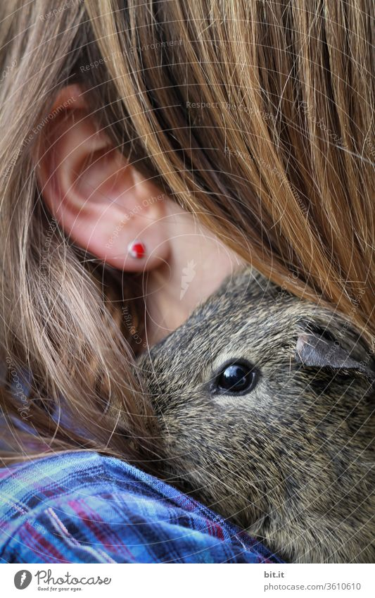 mouse's favorite person... Guinea pig Child Infancy Shoulder Ear Hair and hairstyles Strand of hair Hairy Earring Head Face Human being Skin girl feminine Soft
