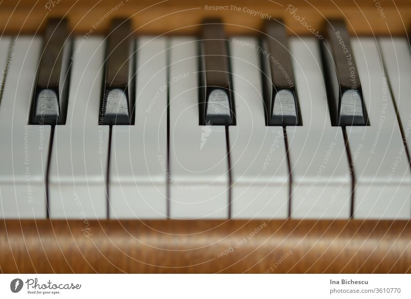 Seven white and five black piano keys surrounded by the light brown wood of the piano, photographed from the player's side. Piano fumble black and white
