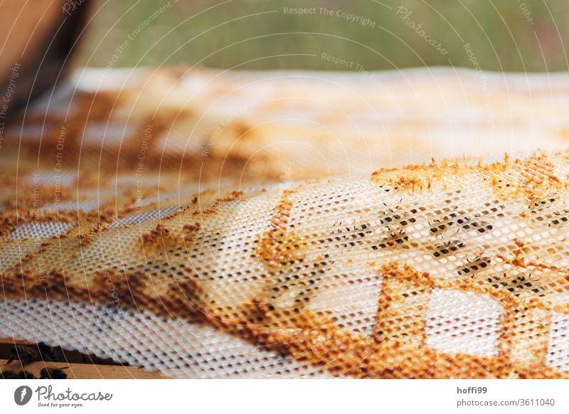 View of an open beehive with Probolis/Kitharz mat Bee-keeping Bee-keeper keep beekeepers Honey honey production organic farming ecologic Honey bee Food Healthy