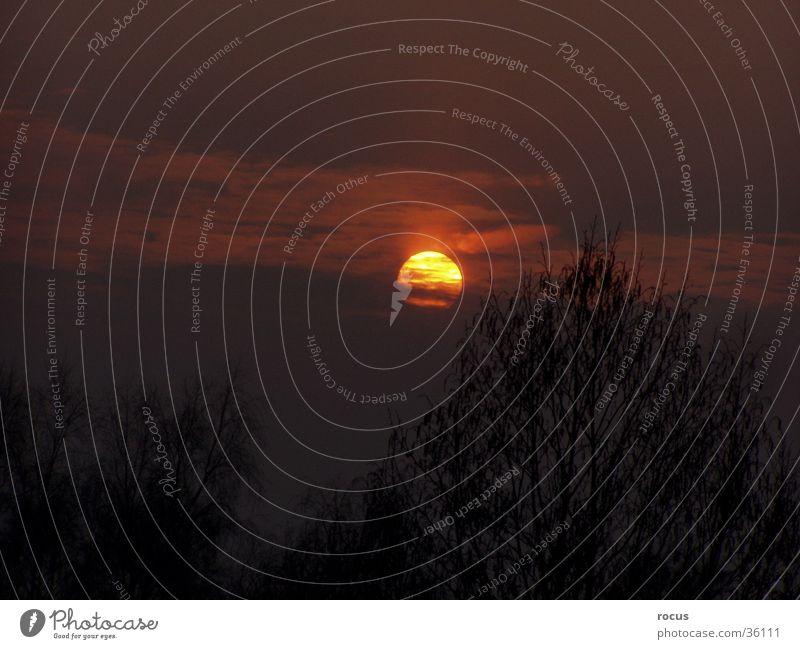 Sun Evening sun