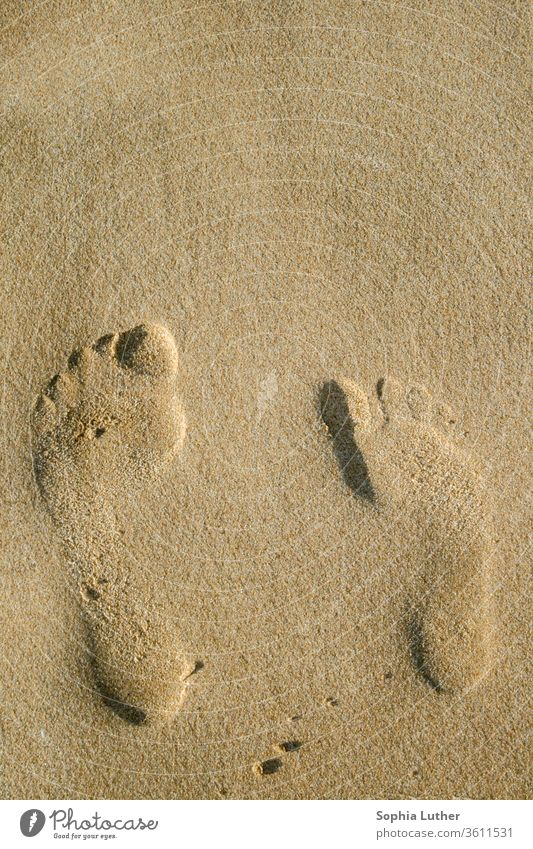 Feet in the sand Footprint on the beach large and small Beach Sand Sandy beach vacation Vacation mood foot footprints Footprints in the sand Together