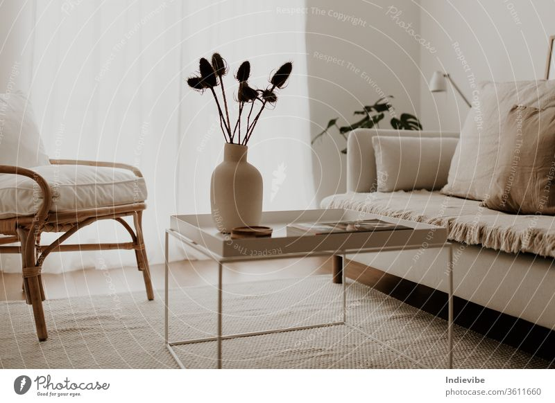 Sunlit living room interior with rattan armchair, white coffee table and white sofa with pillows and blanket, vase with dried flower, palm leaves, lamp, magazines and rug.