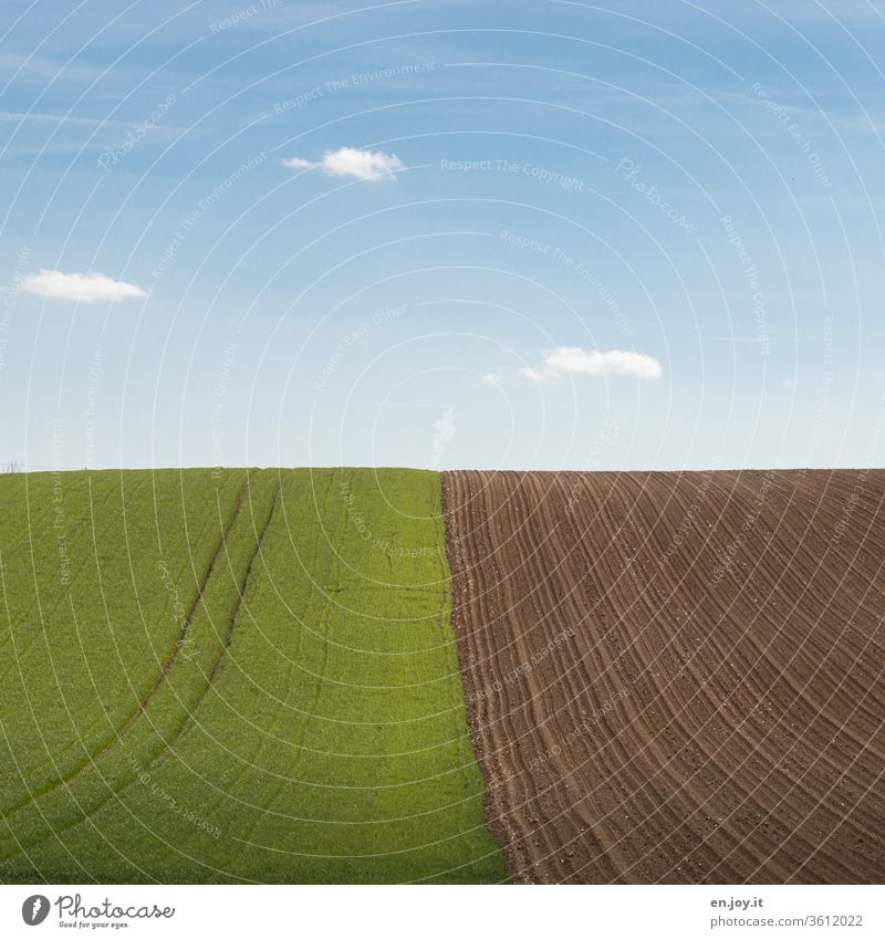Field and field on the hill to the horizon under a blue sky acre Agriculture agrarian Horizon extension Tractor track Plowed hillock okö Earth Sky green rural
