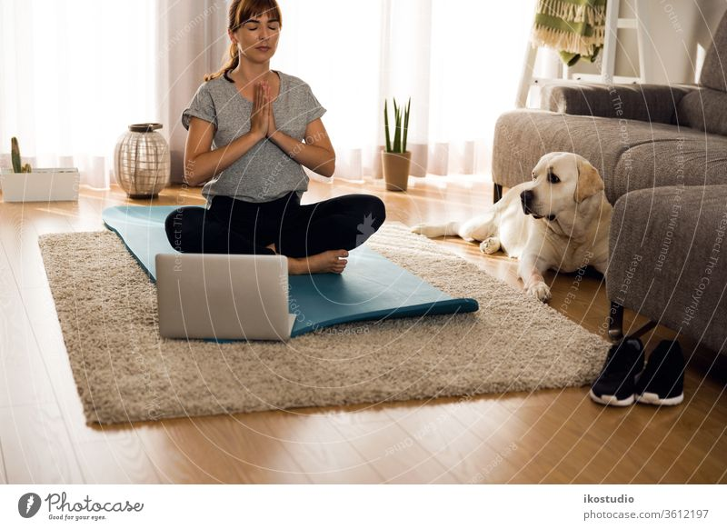 Doing exercise with my lazy dog home woman yoga fitness meditation relaxing pet workout online healthy girl yogi meditate breath laptop technology internet