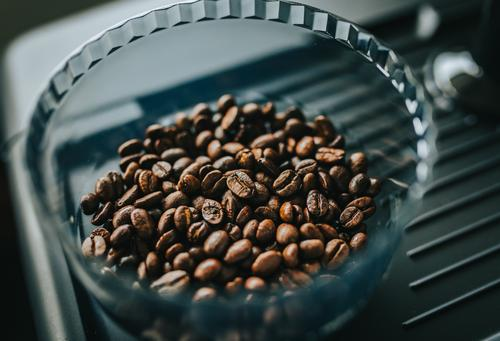 Freshly roasted coffee beans in hopper in home espresso machine Grinder agriculture arabic arabica aroma aromatic background beverage black breakfast brown cafe