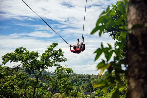 Young  male tourist swinging on the cliff in the jungle adrenaline adventure bali beautiful eruption extreme freedom fun funny green indonesia island leisure