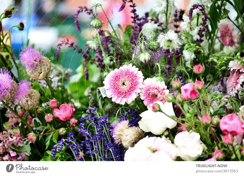 Close-up of a market stall with colourful flowers from the farm garden in full sunshine Market day Country  garden Bouquet Beautiful weather White purple Pink