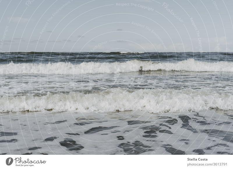 Tides in the Wadden Sea - High tide Waves watt Mud flats Ocean seascape tidal wave Sea coast Colour photo Low tide Coast Beach Water Sand North Sea
