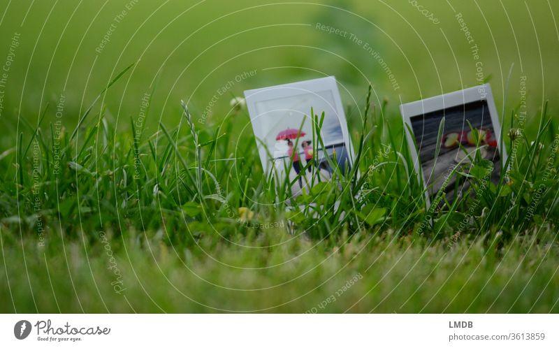Polaroid in the green duo Grass Meadow instax mini pink Joie de vivre (Vitality) Nature girlfriends Umbrellas & Shades depth blur Picnic Sunglasses Trip Summer