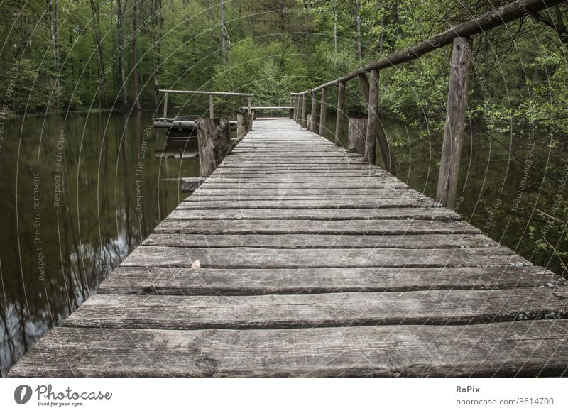 Footbridge at a fishpond in the woods. pier jetty Mole Lake Body of water Water Sky Weather Light Habitat Moody silent tranquillity Valley Nature Park Landscape