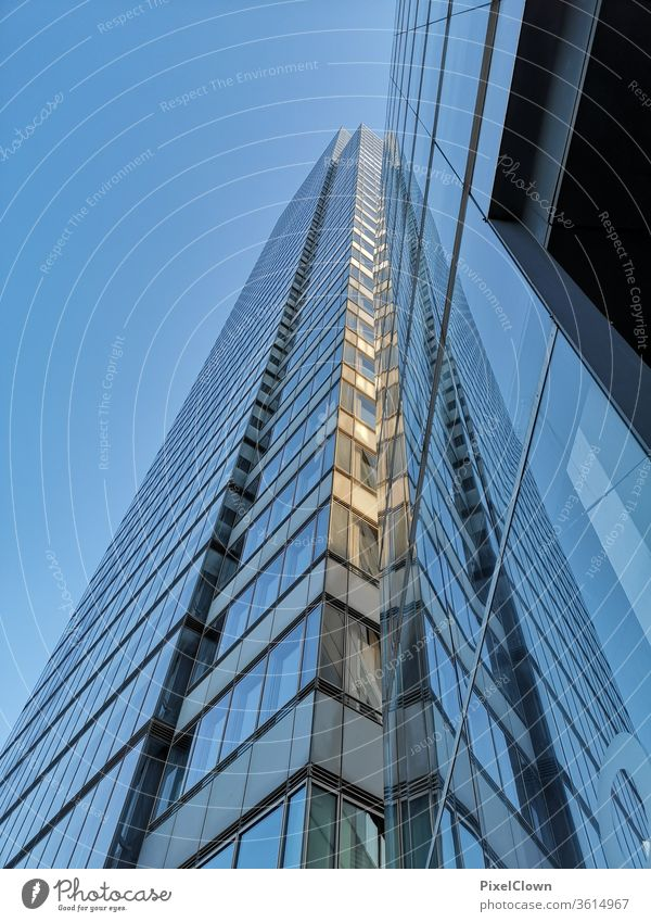 Skyscrapers in an urban metropolis High-rise Architecture Town built Facade Window City dwell metropolitan skyline