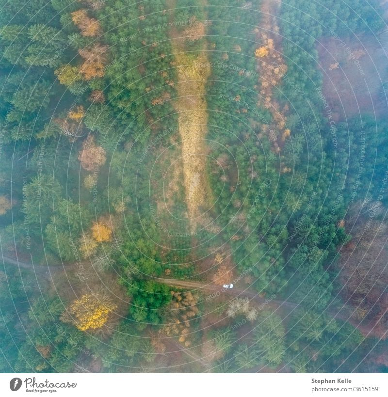 Top view at a foggy forest with a white parking car at a country side road. drone green nature aerial landscape tree smoke natural stream mist high above