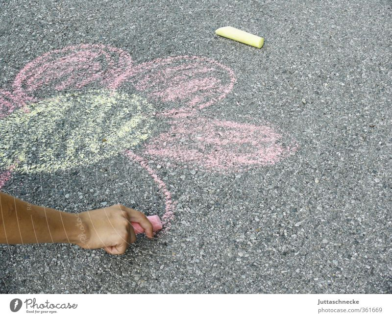 Child Hand Girl Flower Joy Yellow Playing Boy (child) Gray Art Pink Leisure and hobbies Infancy Arm Happiness Concrete