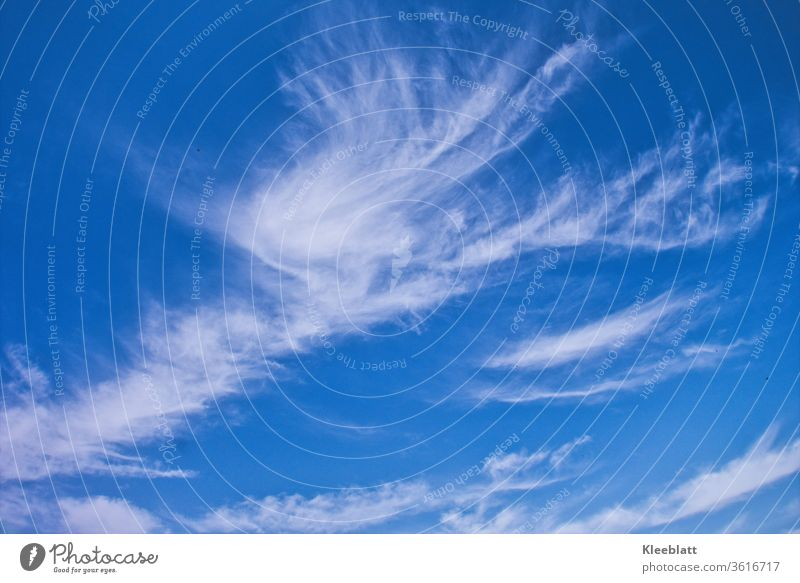 Cloud formation angelic white on a deep blue sky in sunshine Cloud formation, Clouds in the sky Beautiful weather Nature Sky Day Weather Blue Cloud pattern