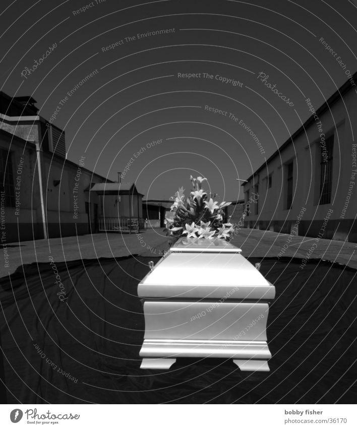 last trip Coffin Dark Argentina Leisure and hobbies Death Black & white photo Bright