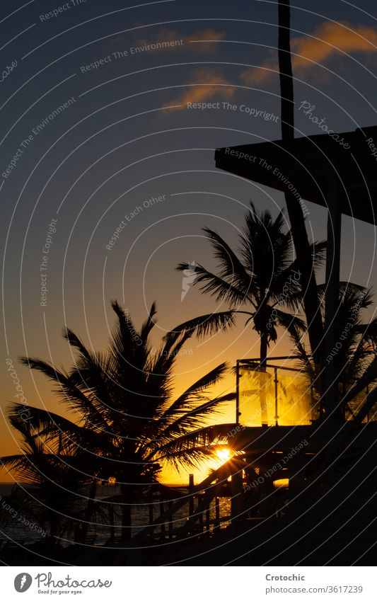 Silhouette of a cabin and palm trees in front of the sea during a sunset vertical hotel house building silhouette sky background beautiful island tropical