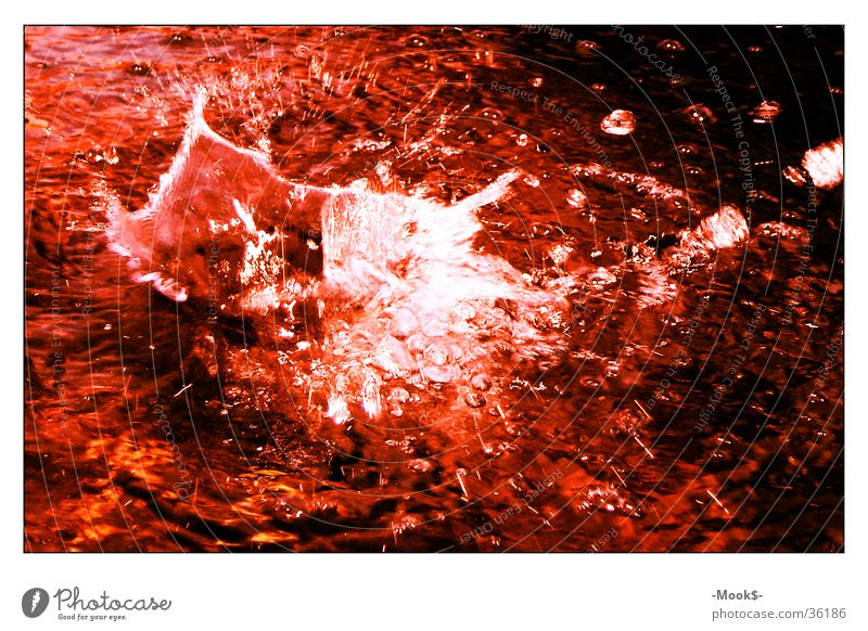 Water Red Style Waves Drops of water Blood Pond Inject Splash of water