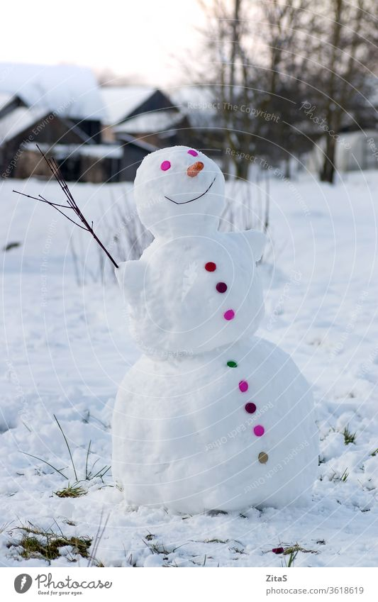 Smiling snowman in the village colorful button white happy buttons carrot nose winter outdoor branch cold