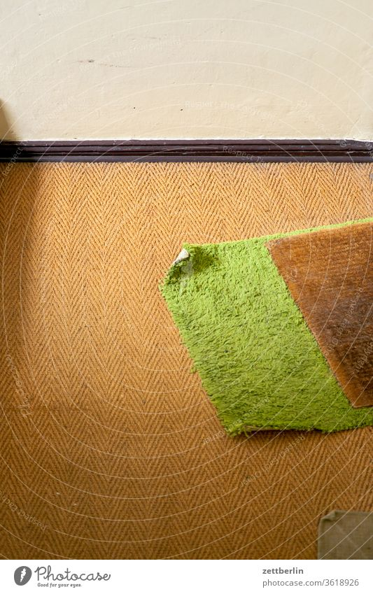 Doormat Staircase (Hallway) Runner Carpet Sisal textile stepping down Rug Protection footfall sound Clang silent neat dwell Apartment Building weave Landing