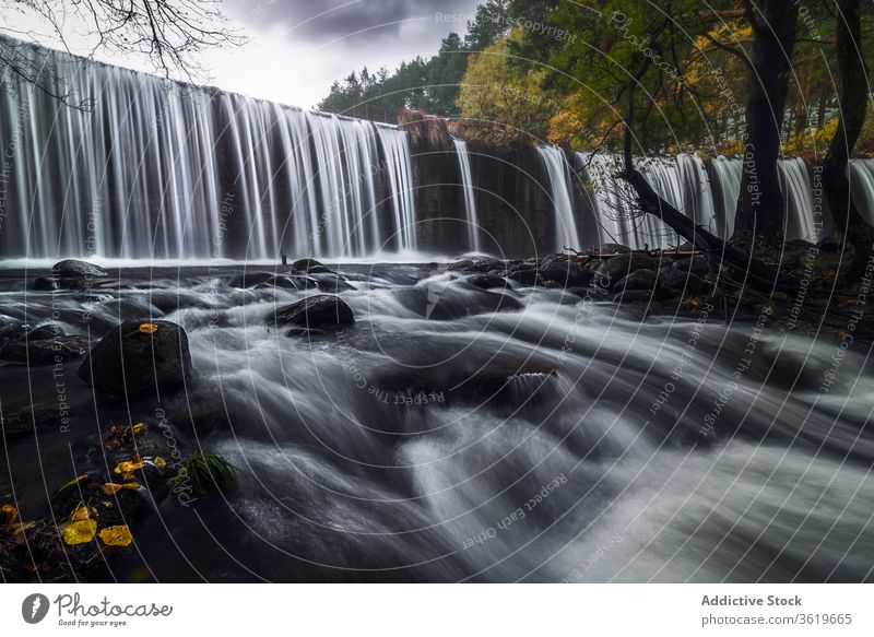Beautiful waterfall in autumn forest river stream flow landscape rocky cloudy gloomy picturesque scenery rapid nature tree environment scenic wild foliage
