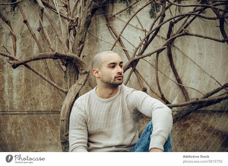 Modern young guy in casual wear sitting near dry tree man modern pensive hipster unshaven beard thoughtful portrait think shabby weathered male handsome style