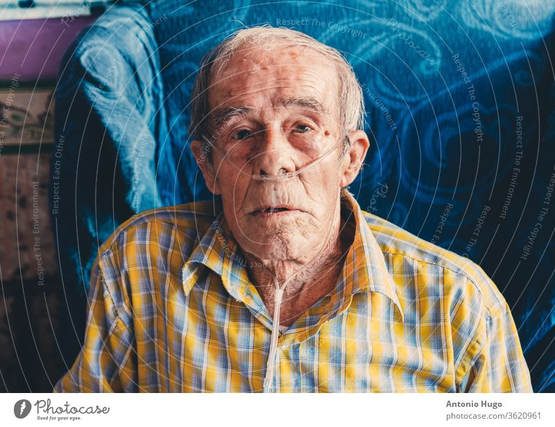 Portrait of an old man sitting at home with oxygen in his nose. plaid shirt person patient one person photography senior adult bed elderly hospital ill illness