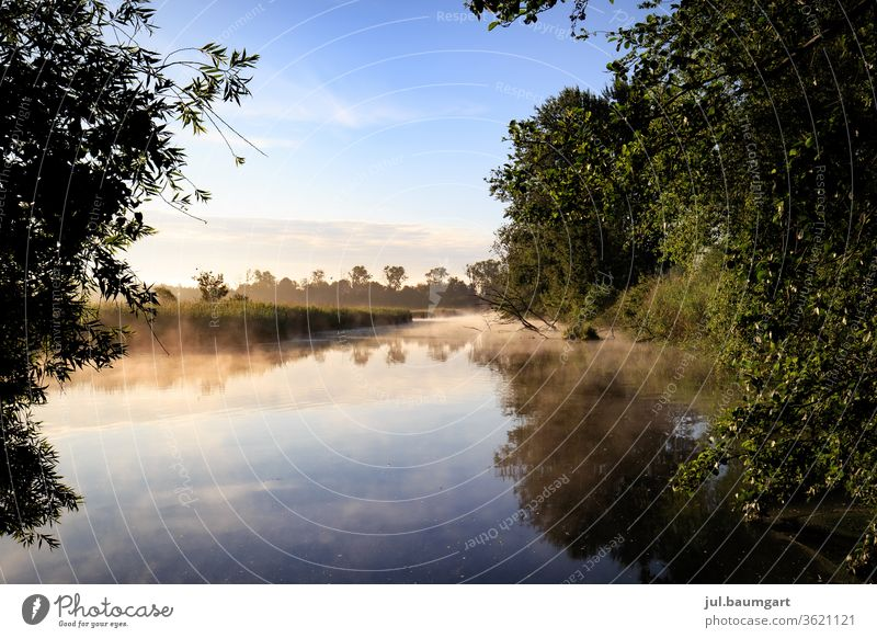 Morning mood at the lake Sunrise Summer reflection Water Lake Trees in the lake Play of colours Reflection Landscape Deserted Nature