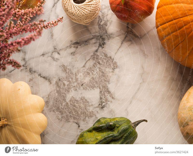 Autumn harvest frame background autumn thanksgiving marble pumpkin squash design food halloween season orange october invitation leaves dinner table fall