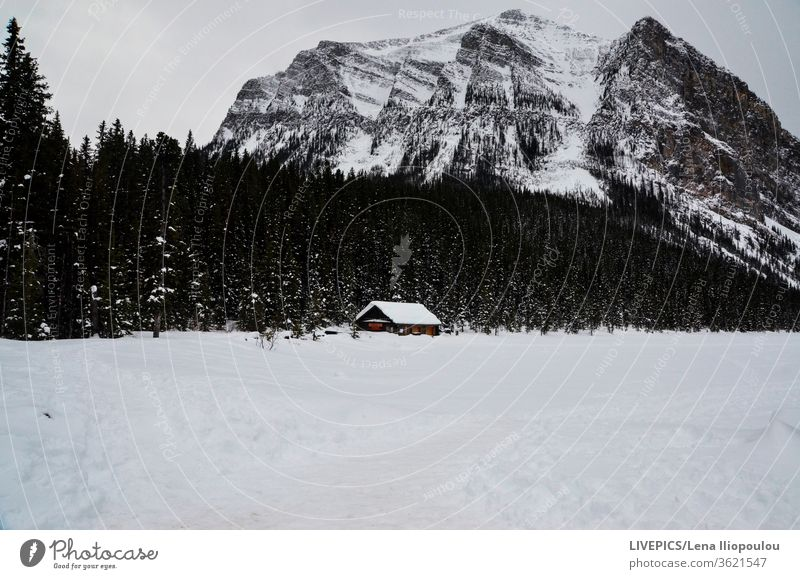 house in the middle of a snown mountain lanscape Winter clouds cold copy space day daylight forest high altitude land landscape mountains nature rural sky