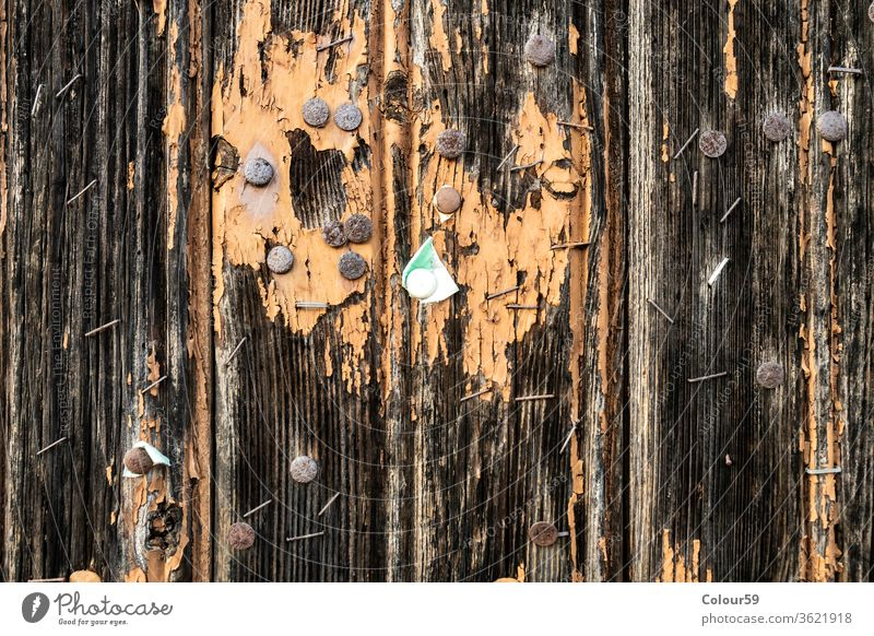 Weathered wooden background metal old texture pins weathered wall nails textured grunge aged retro vintage door architecture ancient push template hobnails