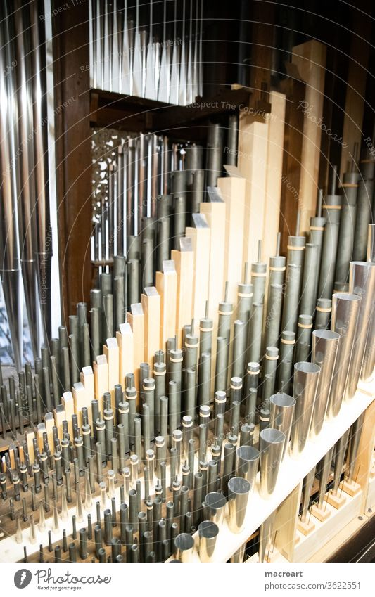 Organ from inside manual Pedal register Whistle wood porcelain Old refurbished Dome Church church music Playing Keyboard fumble Brown tool keyboard instrument