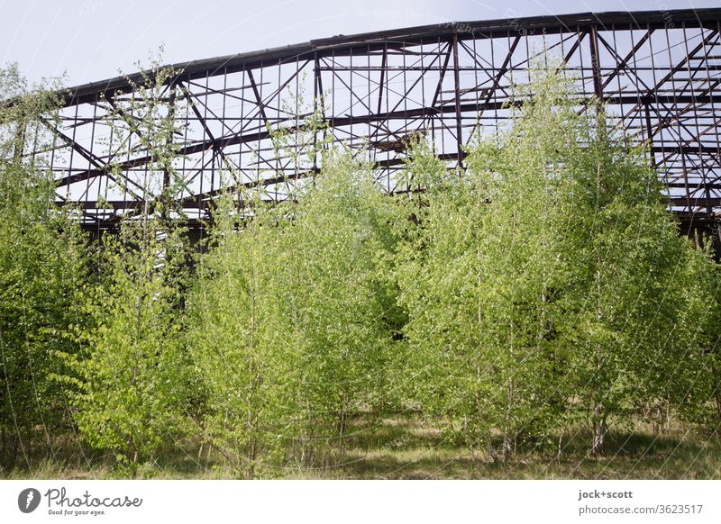 rusty dilapidated hangar with lots of fresh green in front of it lost places Hangar Nature Deciduous tree Broken Transience Old Decline Architecture Ruin