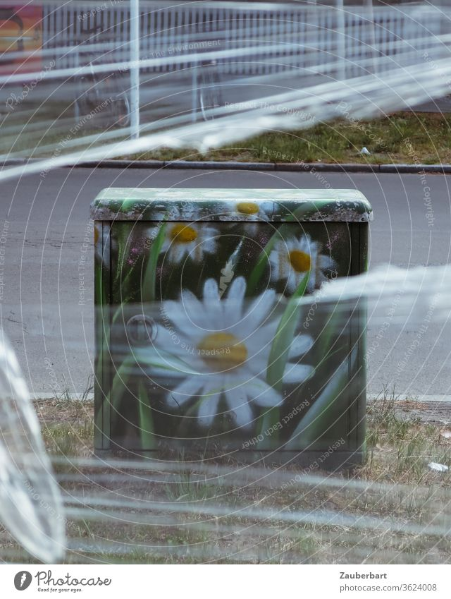 Stattblume - multifunctional housing, grey box painted with flower of Margarite (Leucanthemum), behind plastic foil on the street flowers margarite