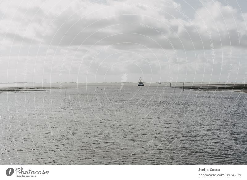 Ship in a far distance that sails through the Wadden Sea. ship tour Transport Environment Day Beach Clouds Dark clouds Sombre mood somber draped in clouds