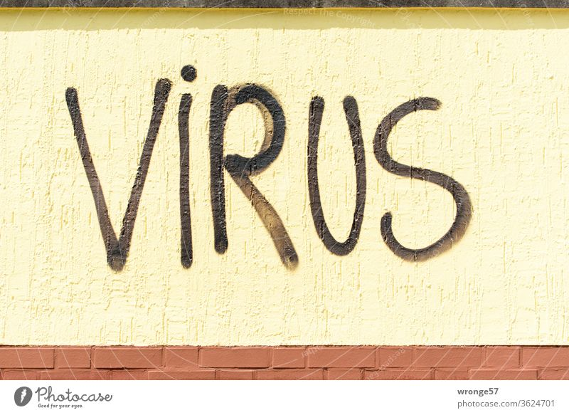 The word VIRUS sprayed in large black letters on a yellow wall Word Graffito Virus black color Spray Wall (building) Wall (barrier) upper-case letters Graffiti