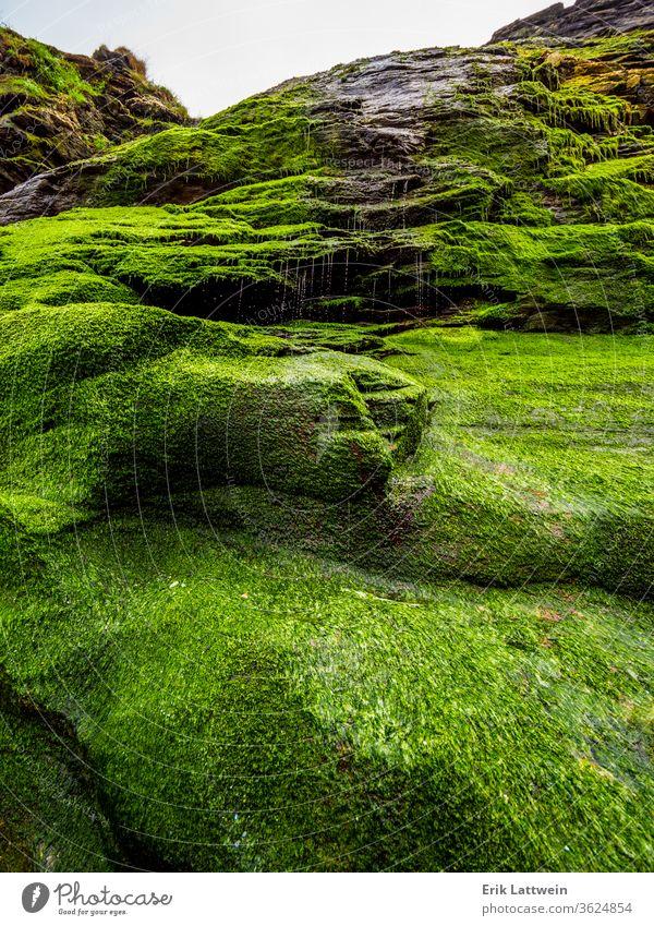 Beautiful waterfall over mossy stones in the Cove of Tintagel in Cornwall cliffs cornwall coast coastal uk england britain british coastline scenic cornish