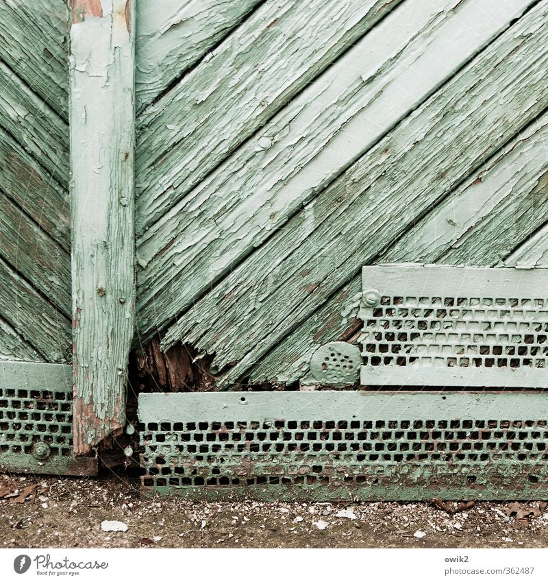 underneath Wood Old Trashy Turquoise Colour photo Subdued colour Exterior shot Close-up Detail Structures and shapes Deserted Copy Space top Day