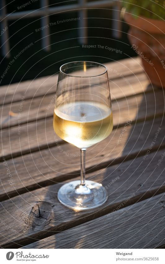 Wine glass with white wine Vine White wine Sunset Gold To enjoy Alcoholic drinks chilly Beverage Summer vacation Evening enjoyment Life Delicious silvaner