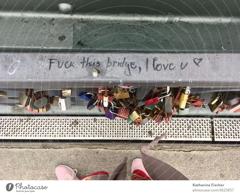 Eiserner Steg, bridge, Frankfurt am Main Town Pedestrian bridge Landmark lettering Graffiti Bird's-eye view Love padlock Padlock Padlocks mainkai Sachsenhausen