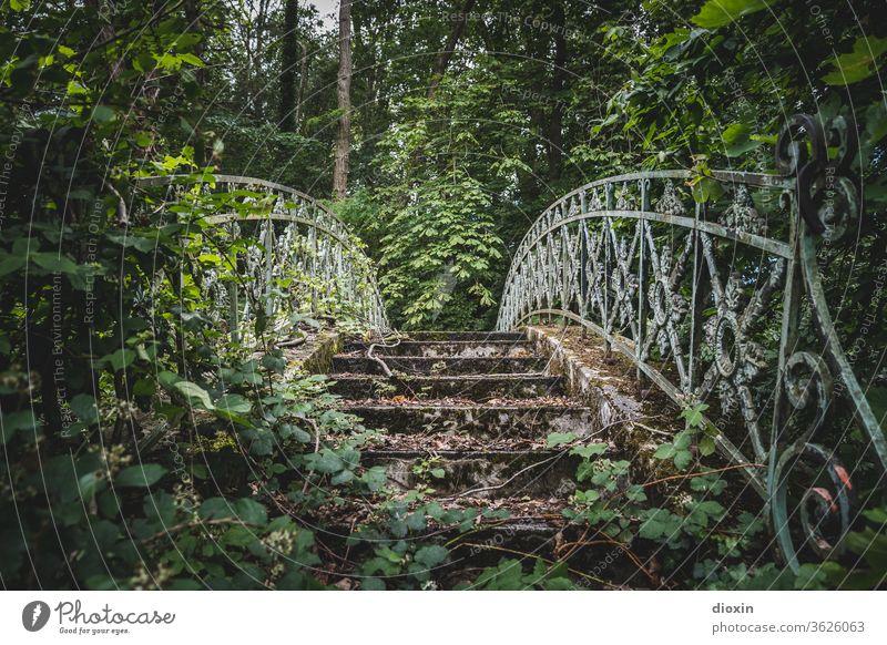 Secret Garden Bridge Park Feral overgrown lost places Transience Apocalyptic sentiment Decline Ravages of time Old Past Change Derelict Bridge railing trees