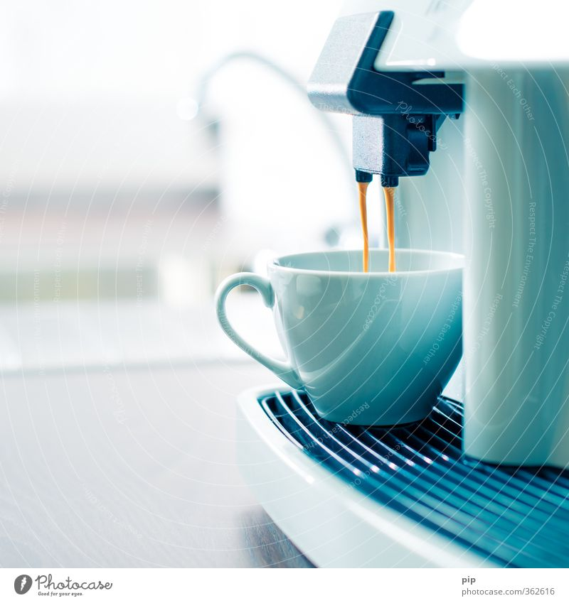 Warmth Bright Brown Contentment Lifestyle Fresh Beverage To enjoy Clean Cooking & Baking Coffee Kitchen Hot Café Cup Flow