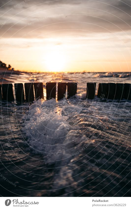 #A# Baltic stages at sunset Stage Sunrise groynes Buhnen in the sea Nature Baltic island Baltic resort Vacation destination Relaxation vacation Coast