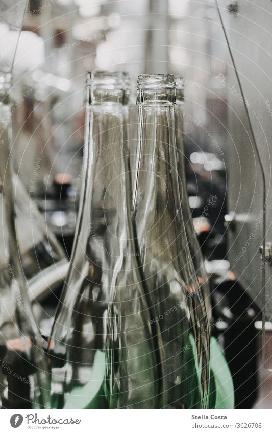 Empty wine bottles run into the wine bottling machine Interior shot Vine Winegrower Deserted Alcoholic drinks Colour photo Shallow depth of field Detail
