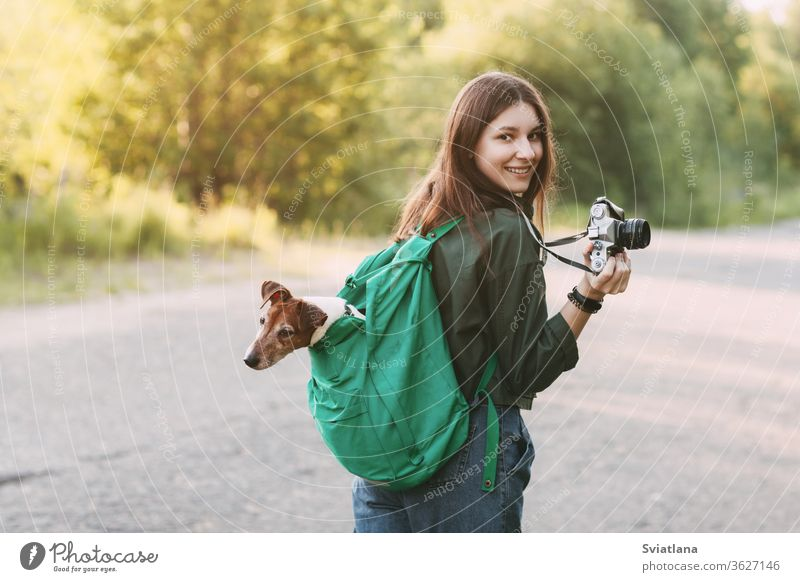 A charming young girl walks in nature, holding a backpack on her shoulder, from which her dog looks out, and holding a camera in her hands. animal cute peeking