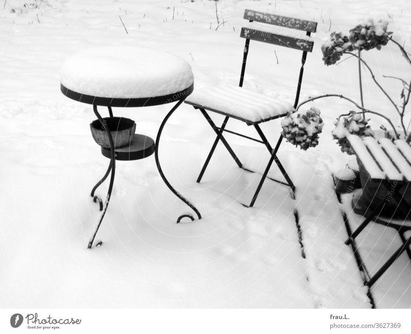 They had been caught cold - now the garden furniture stood in the snow. Winter Snow chill Table Chair Loneliness Deserted Garden Backyard Hydrangea