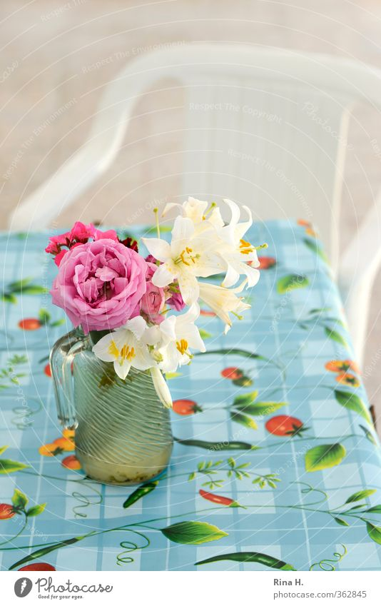 Blue Red Calm Bright Pink Authentic Table Blossoming Rose Chair Terrace Tablecloth Vase Lily Plastic chair Glass pitcher
