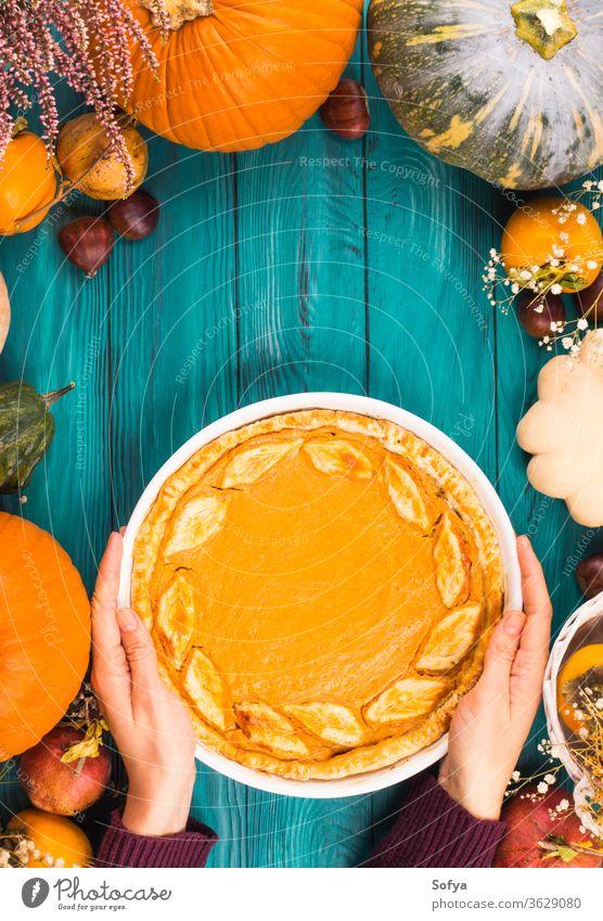 Pumpkin pie, different pumpkins, fall fruit background pumpkin pie woman hands cake frame food halloween above invitation leaves moody november october holiday