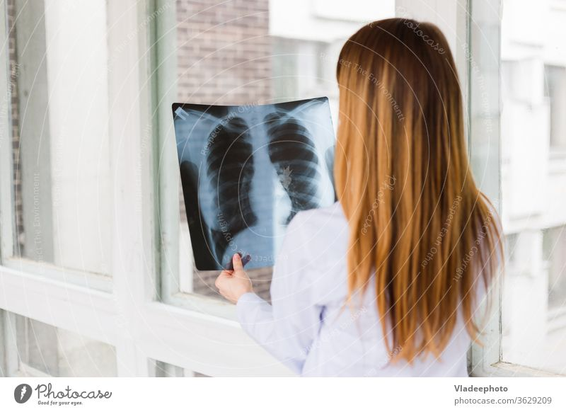 A female doctor examines an x ray of shot of the lungs. View from the back nurse girl x-ray hospital medical stethoscope woman white care chest professional